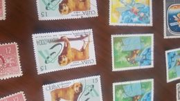 CUBA IL CANE 1 VALORE - Stamps