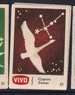 Netherland Space Weltraum Espace: Vivo Matchbox Label; Astronomy; Stars; Cygnus; Cygne - Zündholzschachteletiketten