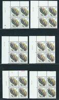 Buzin Nr 2349** 6 Verschillende Datums In Blok Van 4 - 1985-.. Birds (Buzin)