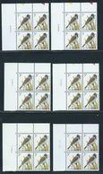 Buzin Nr 2425** 6 Verschillende Datums In Blok Van 4 - 1985-.. Birds (Buzin)