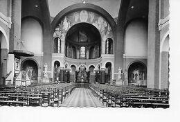 EDEGEM  De Basiliek (binnenzicht) - Edegem