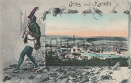 Germany - Gruss Aus Hameln - Hamelin - Litho - Hameln (Pyrmont)