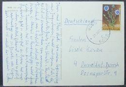 Yugoslavia - Postcard To Germany 1967 Flower 0,50D Solo - 1945-1992 République Fédérative Populaire De Yougoslavie