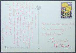 Yugoslavia - Postcard To Holland 1969 Flower 0,75D Solo - 1945-1992 République Fédérative Populaire De Yougoslavie