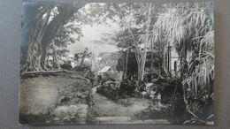 SEYCHELLES - SEYCHELLEN INSELN - LAUSCHIGER WINKEL IN DER NÄHE VON PORT VICTORIA (SEYCHELLEN) - RPPC - Seychelles
