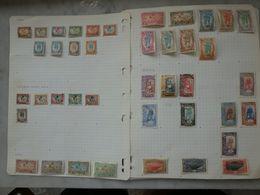 COTE DES SOMALIES Collection Avancée Cote Plus De 1200 € Nombreux Neufs Sans Charnière - Unused Stamps