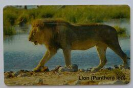 NAMIBIA - Chip - Telecom - NMB-15 - N$50 - Lion - Used - Namibie