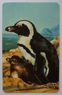 NAMIBIA - Chip - Telecom - NMB-25 - N$50 - Penguins - Used - Namibie