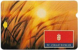 Turkey - TT - Alcatel - R Advert. Series - T.C. Ziraat Bankasi, Sunset, R-083, 100U, 1995, Used - Turquie