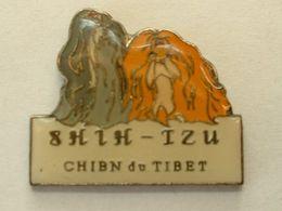 PIN'S CHIEN - SHIH TZU - CHIEN DU TIBET - Dieren