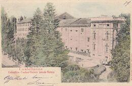 CASTELLANZA-VARESE-COTONIFICIO=CANTONI=-VEDUTA LATERALE-FILATURA-CARTOLINA  VIAGGIATA IL 1-6-1903 - Varese