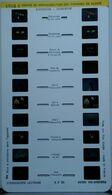 LESTRADE :   1918 D CENTRE DE RÉINTRODUCTION DES CIGOGNES EN ALSACE - Stereoscopes - Side-by-side Viewers