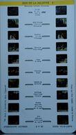 LESTRADE :   ZOO DE LA PALMYRE 1 - Stereoscopes - Side-by-side Viewers