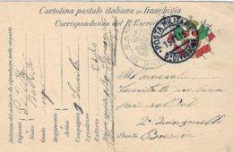 1915-cartolina Postale In Franchigia I Guerra Posta Militare 5 Divisione Viaggiata - 1900-44 Victor Emmanuel III