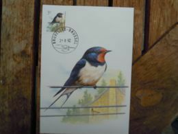 OCB Nr  2475 Buzin Fauna MK Stempel   Bruxelles - Brussel Zwaluw Hirondelle Swallow - 1985-.. Birds (Buzin)