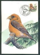 OCB Nr  2918 Buzin Fauna MK Stempel   5030 Gembloux - 1985-.. Birds (Buzin)