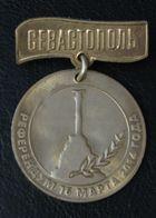 Russia Medal Sevastopol Referendum March 16, 2014 - Russland