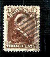 35552 - NEWFOUNDLAND - Amerika (Varia)