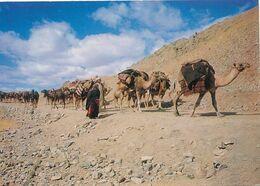 CPM GF - 27095 -Afghanistan -Caravane à Localiser -Envoi Gratuit - Afghanistan