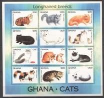 PK036 GHANA ANIMALS LONGHAIRED BREEDS CATS 1SH MNH - Katten