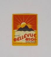 Cx13 CC6) Suisse BELLEVUE RIGI KALTBAD  Etiquette Hotel Label 5x4cm - Etiketten Van Hotels