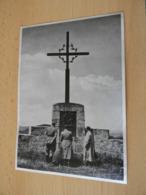 "Sammelbild Nr.2 Aus Dem Album ""Adolf Hitler."" - Documents"