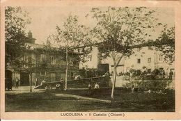 (C).Lucolena(FI).Il Castello.F.to Piccolo.Viaggiata (c17) - Firenze (Florence)