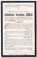 Dp. Cools Ludovicus. ° Olmen 1909 † Olmen 1929 - Religion &  Esoterik