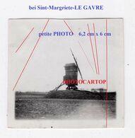 MOULIN A VENT-Windmühle-LE GAVRE Bei Ste Marguerite-Sint-Margriete-petite PHOTO All.-Guerre 14-18-1 WK-BELGIEN - Belgique