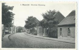Blaasveld - Mechelse Steenweg - Uitgave Ed. Adriaens (Tabak-Likeuren) - Willebroek