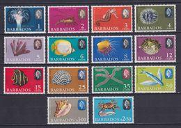 BARBADOS 1965, SG# 322-335, Fish, MH - Barbados (...-1966)