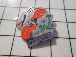 615B Pin's Pins / Beau Et Rare / THEME : SPORTS / BOXE GANTS CIGOGNE BLEUET CRALB - Boxeo