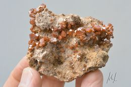 Vanadinite Sur Barite Mibladen Maroc - Minerals