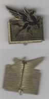Insigne Du 505 RT - Armée De Terre