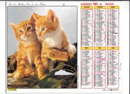 Calendrier 1991, Almanach Des P T T ,postes, Jeunes Chiens Chats,  ,Département 30 Double Face - Grand Format : 1991-00