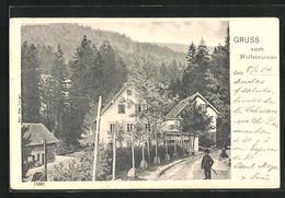 AK Seebach, Gasthaus Wolfsbrunnen Und Mummelsee - Deutschland
