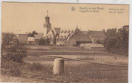 KAPELLE OP DEN BOSCH / ZICHT OP DE KERK - Kapelle-op-den-Bos