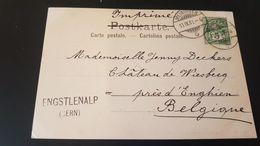 Engstlensee - Stempel Enstlenalp Bern - Usados