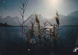 Cpm 10x15. PRESTIGE . ANNECY . P21. Hautes Herbes Au Coucher De Soleil - Fotografia