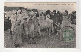 Bizerte / Tunisie , Le Marché Aux Bestiaux , Beau Plan ( Autre Vue) - Tunisie