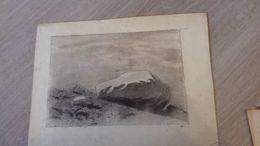 Très Joli Dessin Format A4 Pas De Signature - Drawings