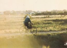 Cpm 10x15. PRESTIGE . CHARENTE MARITIME .N° 17-P52 . Paysanne à Vélo - Fotografia