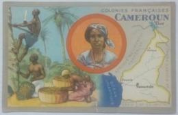 Colonies Françaises Cameroun édité Par Les Produits Chimiques Lion Noir - Old Paper