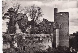 CLISSON:  Château  Ruines Au Sud-Ouest,Donjon Et Grosse Tour - Clisson