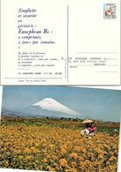 JAPON - PUBLICITE GERIATRIE - EUNEPHRAN B6   /2 - Pharmacy