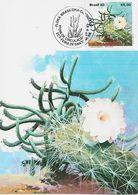 3538   Máxima Flora Brasileira , Cactus, 1983,cactáceas,Brasil - Sukkulenten