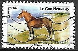 FRANCE   -    2013  .  Y&T N° 814 Oblitéré.     CHEVAL  /   Le COB  Normand - Adhésifs (autocollants)