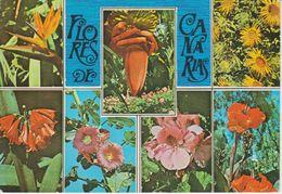 (CANA1455) FLORES DE CANARIAS. FLEURS ... UNUSED - Other