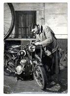 Photo Format  13 Par 18   Moto - Motos