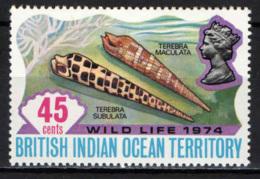 BRITISH INDIAN OCEAN TERRITORY - 1974 - WILD LIFE - TEREBRA SUBULATA E TEREBRA MACULATA - MNH - Territoire Britannique De L'Océan Indien
